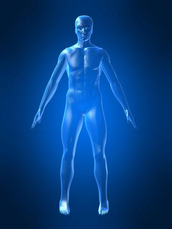 human body Stock Photo
