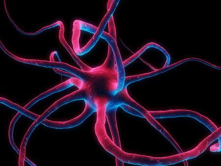 dendrites: brain cell