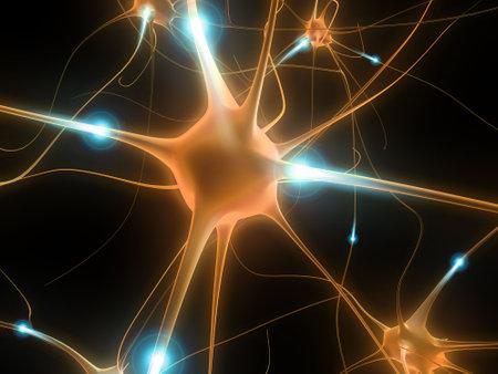 cellule nervose: cellule di cervello attive Archivio Fotografico