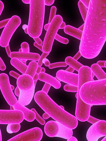 many bacteria Stock Photo - 1066990