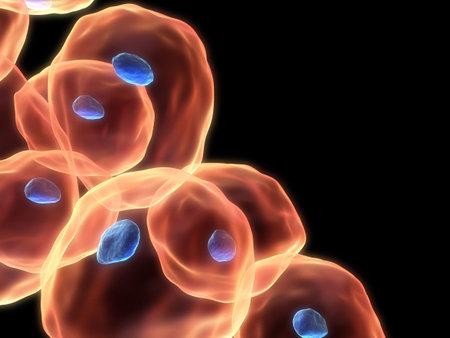 celulas humanas: 3d c�lulas  Foto de archivo