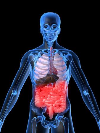 human internal organ: bellyache Stock Photo