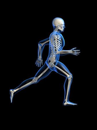 endurance run: running man anatomy Stock Photo