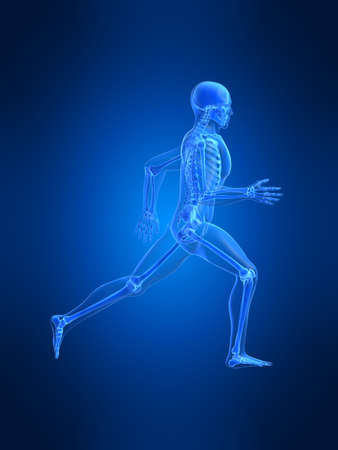 running man anatomy Stock Photo