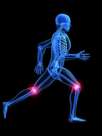 esqueleto humano: anatom�a hombre corriendo con las rodillas dolorosas  Foto de archivo
