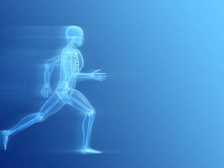 skeleton skull: running man anatomy Stock Photo
