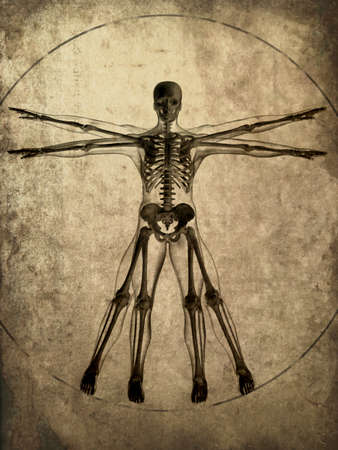 da vinci: grunge skeleton Stock Photo