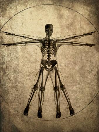 grunge skeleton Stock Photo