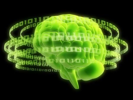 digital brain photo