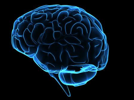 blue brain photo