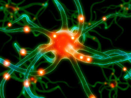 active axon Stock Photo - 1424620