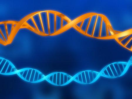 modelos de ADN Foto de archivo - 1424511
