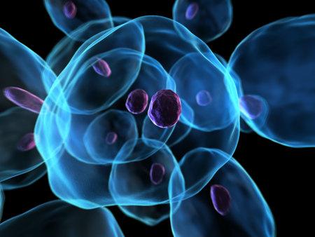 membrane cellulaire: 3d cellules