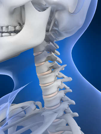 ilium: x-ray neck Stock Photo