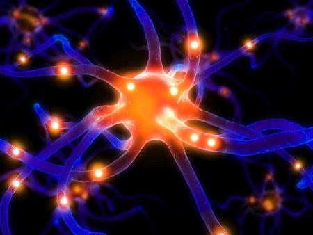 neurone: active neurone cell