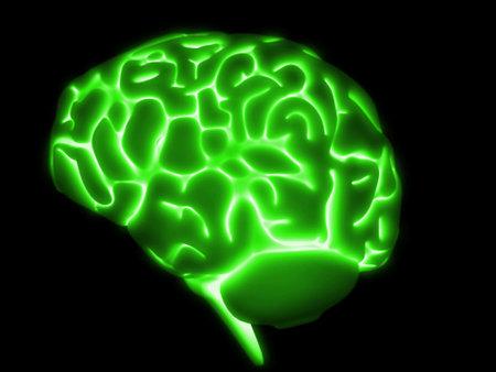 glowing green brain Stock Photo - 2846369