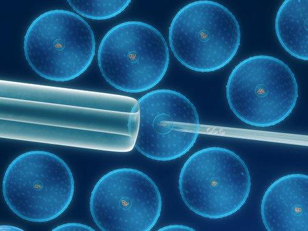 human pile: manipolazione di cellule