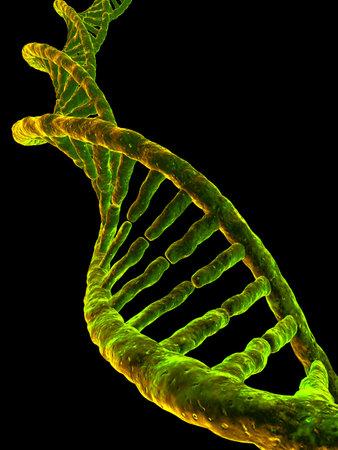 3d gene Stock Photo - 2886253