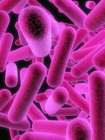 isolated bacteria Stock Photo - 2902507