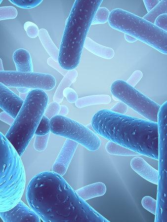 microscopisch: bacteriën