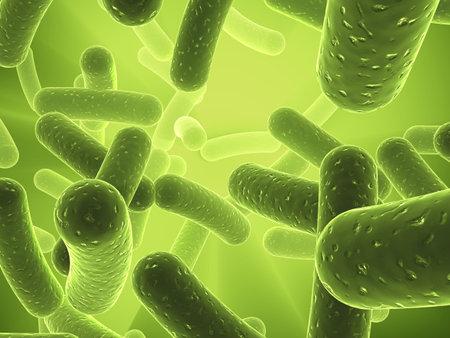 electron: bacteria