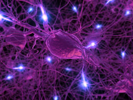 active axon Stock Photo
