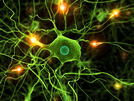 biological science: active axon Stock Photo