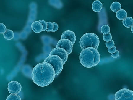 electron: streptococcus Stock Photo