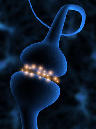 cellule nervose: attiva dei recettori
