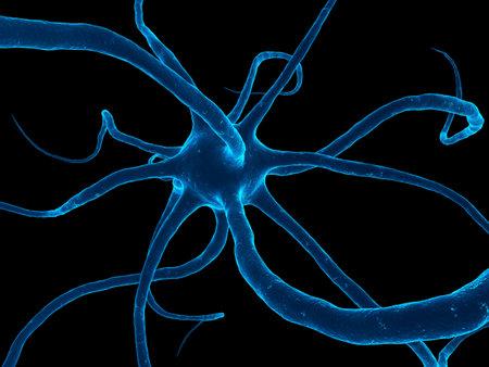 menselijke zenuw cel Stockfoto