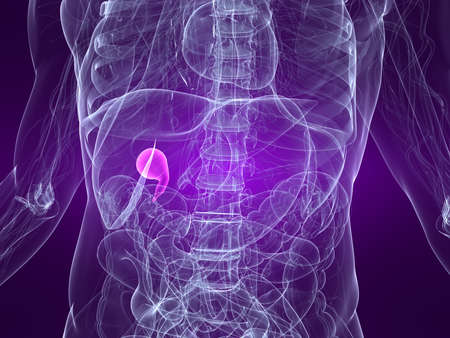 inflammated: highlighted gall bladder Stock Photo