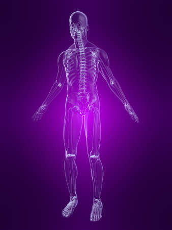 inflammated: human anatomy Stock Photo