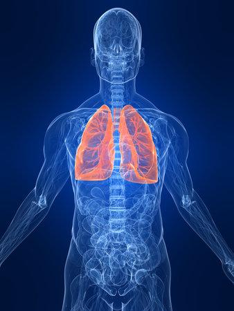 highlighted: destac� pulm�n