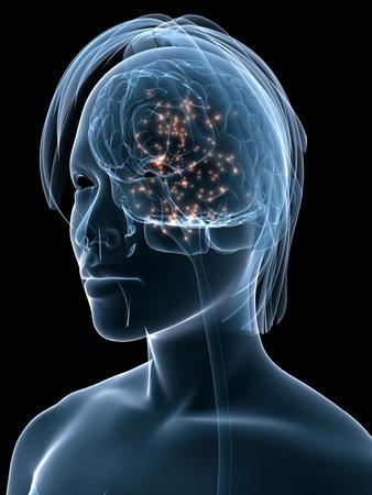 transparent female head shape with active brain