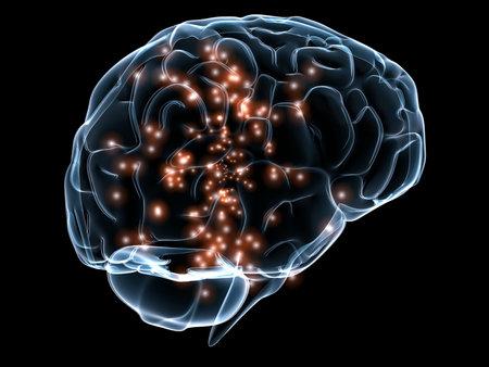 scan: active human brain