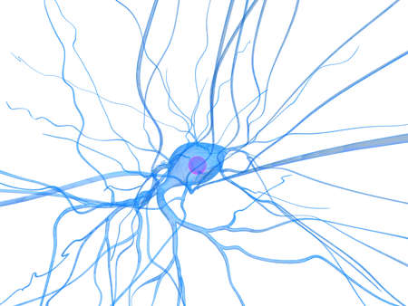 isolated nerve cell