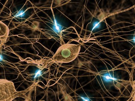 neurona: activa las c�lulas nerviosas Foto de archivo