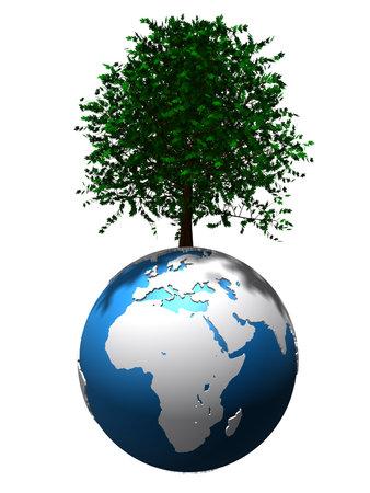 trees on globe Stock Photo - 4757725