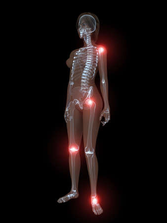 transparent female body with highlighted joints Stock Photo - 4844232