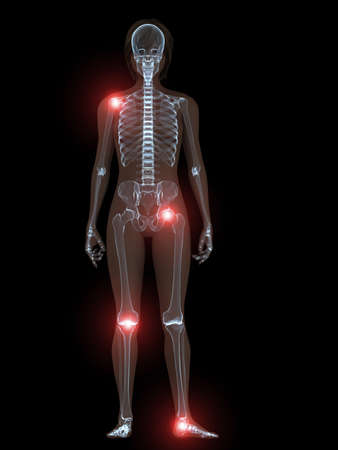transparent female body with highlighted joints Stock Photo - 4844234