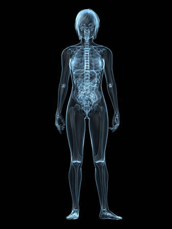 inflammated: transparent female body with organs