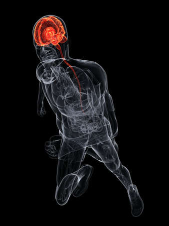 inflammated: human highlighted brain Stock Photo