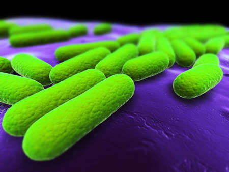 close up of some isolated bacteria photo