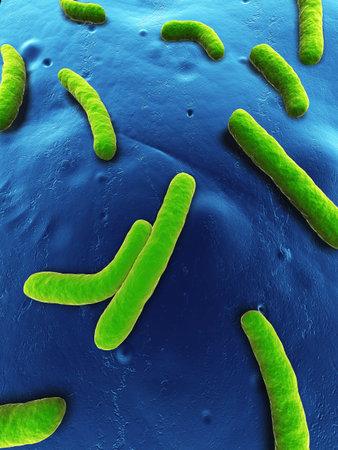 close up of some isolated aeromonas bacteria