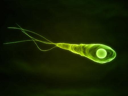 close up of an isolated tetanus baterium photo