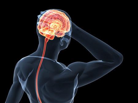 body shape: forma del corpo umano - illustrazione di cefaleaemicrania