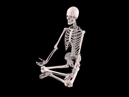 sitting human skeleton Stock Photo - 6244228