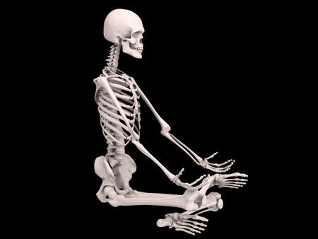 sitting human skeleton Stock Photo - 6244158