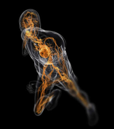 inflamed: running man - vascular system  Stock Photo