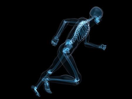 running skeleton  photo